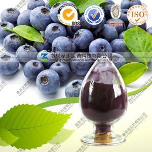 High Quality and Hot Sell Blueberry Extract Anthocyanin 25%