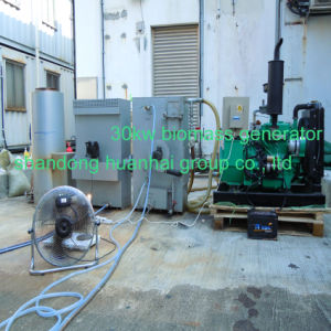 20kw, 50kw, 100kw To2000kw Biomass Gas Generator pictures & photos