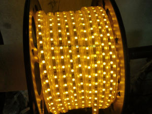 CE EMC LVD RoHS Two Years Warranty, Blue SMD LED Flexible Rope Light (SMD3528/5050) pictures & photos