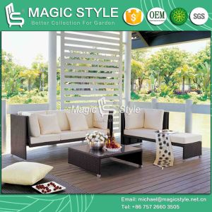 Rattan Sofa Set with Cushion Garden Furniture (Magic Style) pictures & photos