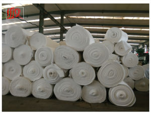Non Woven PP/Pet Geotextile Fabric for Counstruction pictures & photos