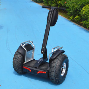 Hot Sale Samsung Lithium Battery 2 Wheel Self Balancing Handled Scooter Electric Scooter 2 Wheels with Handle Chariot Scooter pictures & photos