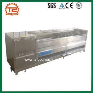 Vegetable Processing Machinery Ginger Carrot Potato Washing Machine pictures & photos