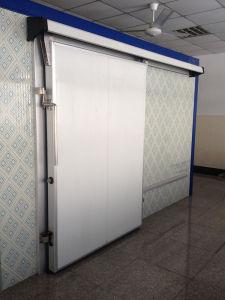 Cold Room Door, Cold Room Sliding Door, Cold Storage Door pictures & photos