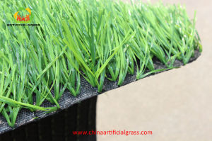 Natural Appearance Artificial Grass for Football or Soccer
