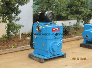 Specialized Manufacture Rotary Piston Pumps pictures & photos