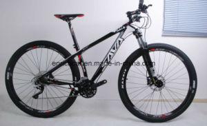 29′′ Carbon Fiber Mountain Bicycle pictures & photos