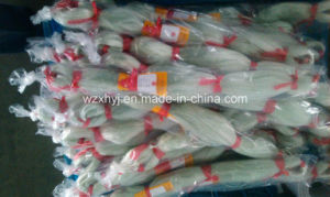 Nylon Multifilament Fishing Net 6 (0.55mm-0.65mm) pictures & photos