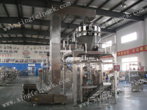 Automatic Frozen Food Packing Machine (XFL-350) pictures & photos