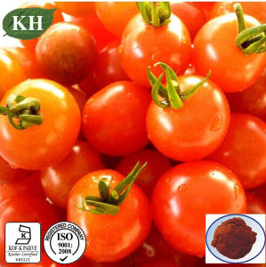100% Natural Tomato Extract Powder Lycopene 5% ~98% for Food Additive pictures & photos