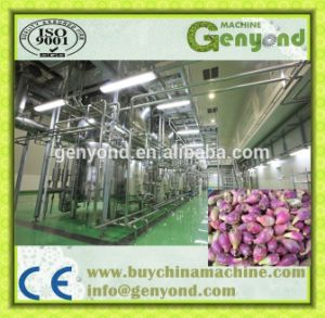 Top Quality Complete Prickly Pear Processing Machine pictures & photos