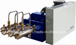 L-CNG High Pressure Pumps pictures & photos