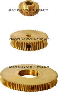 Customized Brass Bronze Worm Wheel Worm Gear