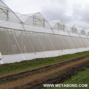 Meyabond 100% HDPE Agricultural Anti Insect Netting Greenhouse Net pictures & photos