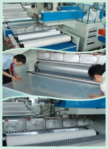 Air Bubble Film Making Machine pictures & photos