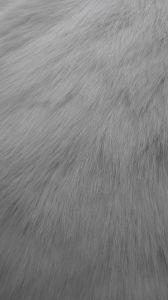Artificial Fur Fake Fur Faux Fur High Pile Fur for Coat pictures & photos