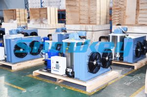 Chinese New Design Best Selling Flake Ice Generator pictures & photos