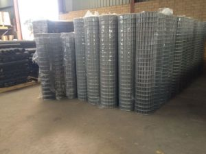 Elctro Galvanized Welded Wire Mesh Roll Best Price Anping Yaqi pictures & photos