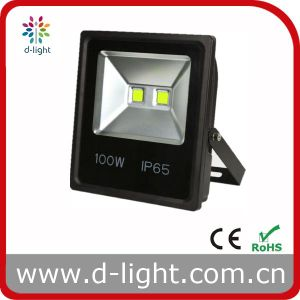 High Power Cheap Price Outdoor Use COB IP65 100W LED Floodlight pictures & photos