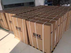 Folding E Bike Mini Pocket Bicycle pictures & photos