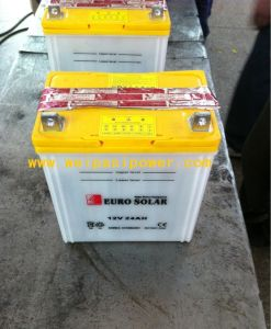 EURO SOLAR battery, or OEM are welcomed! pictures & photos