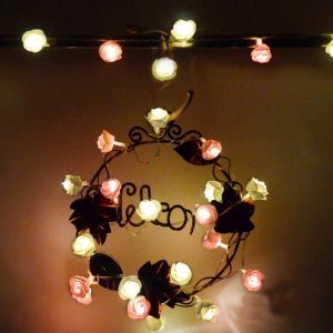 2m20LED Rose Battery LED String Light Fairy Light for Decoration pictures & photos
