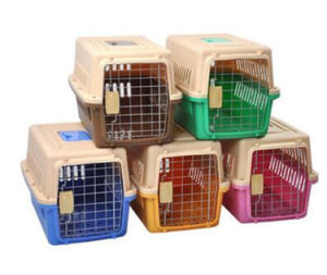 PP Bright Color Plastic Dog House Dog Cage Pet House pictures & photos