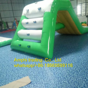 The Shark PVC Material Water Slide, Inflatable Water Park Toys pictures & photos