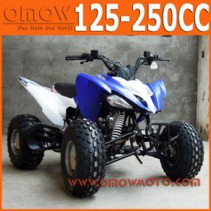 Pentora Cool Sport 125cc Quad pictures & photos