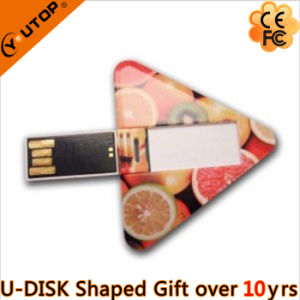 Portable Plastic Waterproof Card USB Flash Disk as Gift (YT-3119) pictures & photos