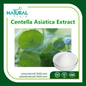 Supply Plant Extract Centella Asiatica Extract 80% Asiaticoside/Gotu Kola Extract for Skin Whitening pictures & photos