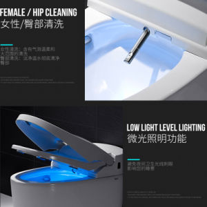Foshan Manufacturer Automatic Toilet with Smart Comtrol System pictures & photos
