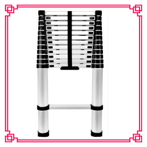 Yongkang Deli Lightweight Retractable Telescopic Ladder Price Made in China pictures & photos