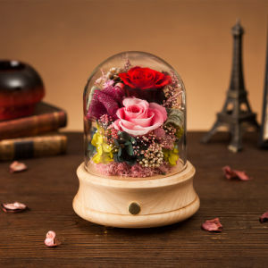 Promotion christmas Music Box Flower Gift for Christmas Souvenir pictures & photos