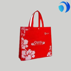 High Quality Non Woven Bag pictures & photos