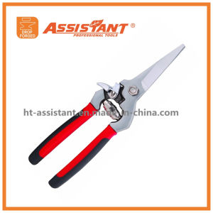 Garden Secateurs Hand Pruners Tree Trimmers Drop Forged Floral Shear pictures & photos