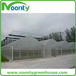 Multi-Span Gothic Agricultural Greenhouses Type pictures & photos