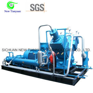 Oil-Free Water Cooling Reciprocating Piston Oxygen Gas Compressor