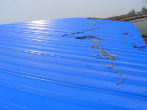 Color Corrugated Steel Sheet/Colorful Corrugated Roofing Sheet pictures & photos