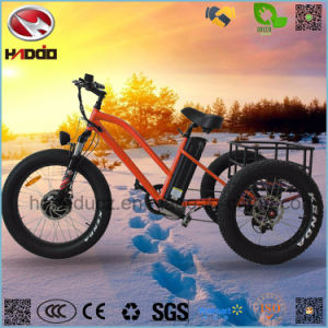 48V 500W Fat Tire Hydraulic Suspension Cargo Electric Tricycle for Sale pictures & photos