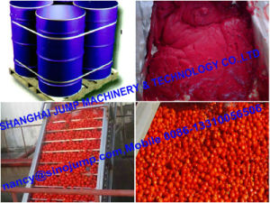 New Crop Bulk Tomato Paste in Aseptic Bag pictures & photos