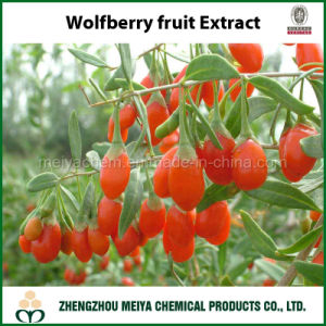 Fresh Powder Chinese Wolfberry Without Additives and Pigments pictures & photos
