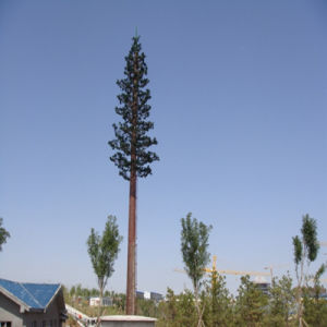 Disguised Tree, High Quality Telecom Tower pictures & photos