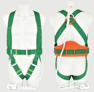 Ring Full Body Safety Work Harness with CE pictures & photos