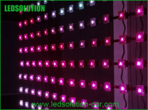 P80 Indoor Full Color Rollable Strip LED Display pictures & photos