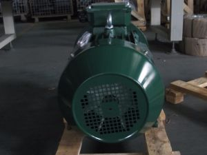 High Efficiency Ye3 Cast Iron Induction Electric Motor pictures & photos