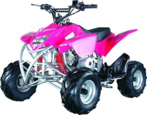 110cc Four Stroke Engine ATV pictures & photos