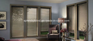 Roller Windows Blinds Office Quality Windows Blinds pictures & photos
