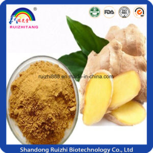 Fresh Vegetable Extract Dried Ginger Powder for Bubble Tea pictures & photos