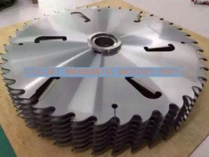 Circular Saw Blades for Woodworking Machine 700X5.2/4.0 (with scraper) pictures & photos